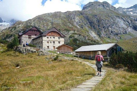 Die Wild-WG wird größer, bei der Berliner Hütte wird ausgewildert. Foto: mayrhofen.at